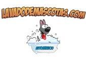 Lavado de Mascotas